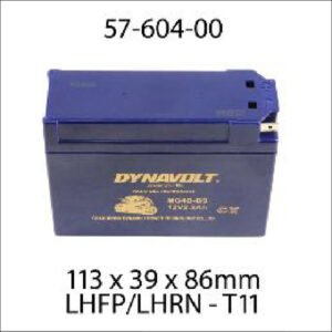 DynaVolt Gel Series MG4B-BS